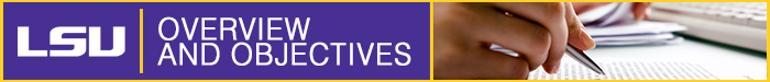 The overview and objectives header.