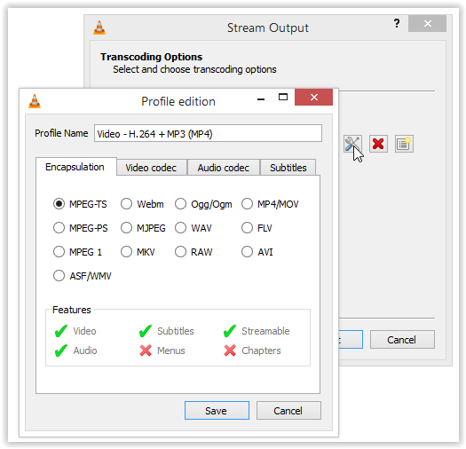 screenshot of the Transcoding Options